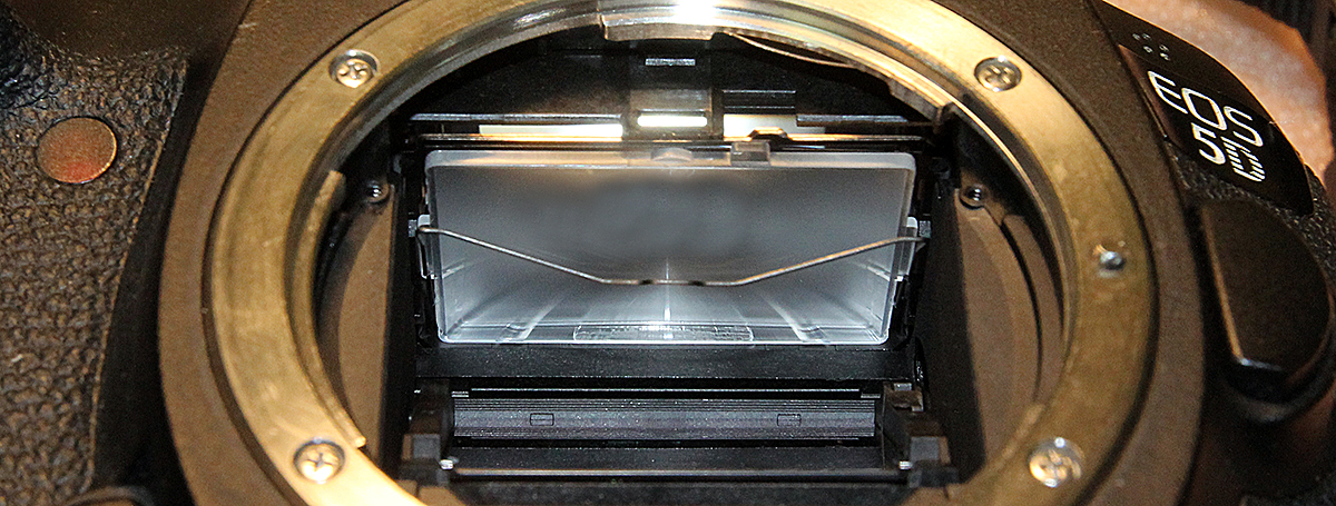 Внешний вид фокусировочного экрана в Canon EOS 5D Mark III высвобожденного от фиксаторов.