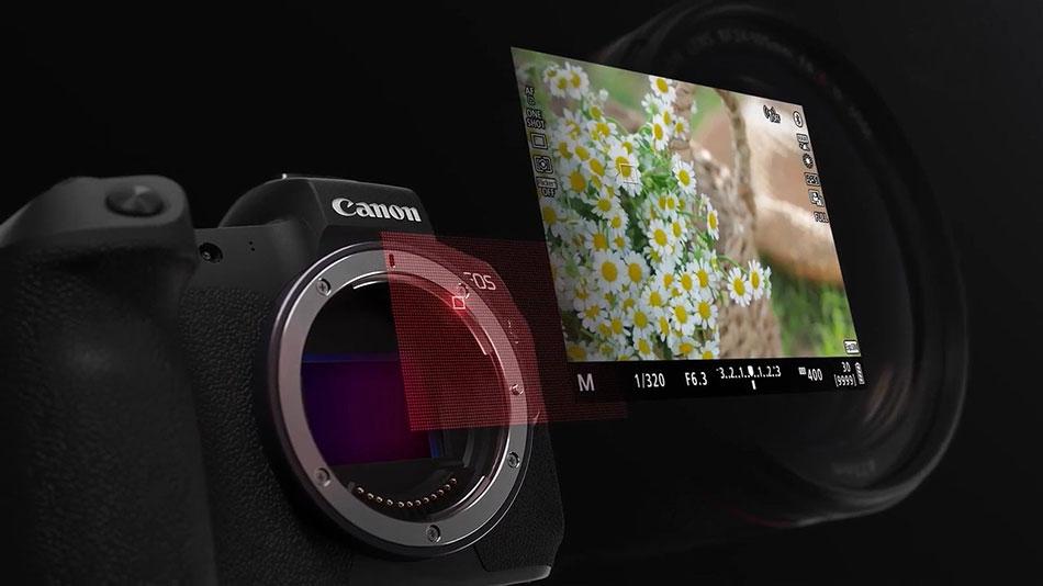 Система фокусировки Dual Pixel CMOS AF фотоаппарата Canon EOS R c 5655 точками фокусировки