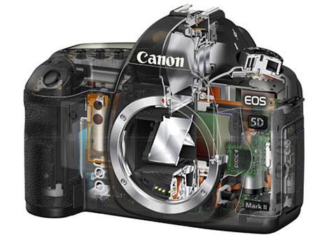 Ремонт фотоаппаратов Canon EOS 5D Mark II, основные неисправности сроки и цены