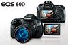 Профессиональный ремонт фотокамеры canon 60d